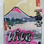 SHINAKO SATO, YUSUKE SAITO – Collages